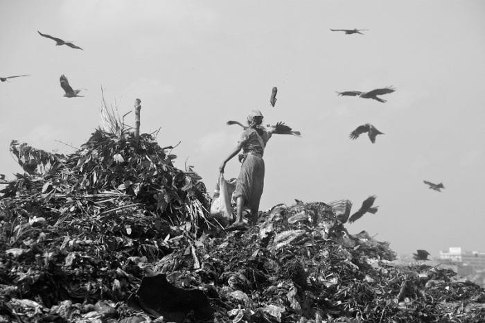 """Hoài Văn: """"hàng ngày có hàng ngàn người mưu sinh trên những đống rác độc hại"""""""